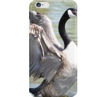 Wing Flapping iPhone Case/Skin