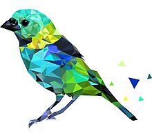 Geometric Bird Photographic Print