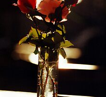 3 Roses by Doug Gruber
