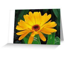 Donna Greeting Card