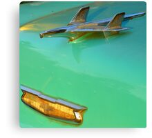 I Believe I Still Could Fly... Canvas Print