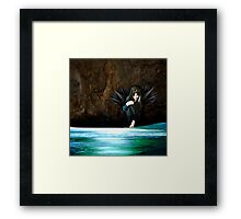 First touch of water Framed Print