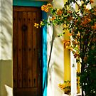 Inviting Entrance by Linda Gregory