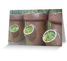 Sewer pipe planters Greeting Card