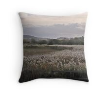 Inland Throw Pillow