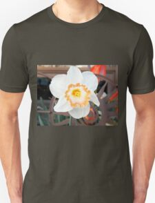 Salt Kettle Daffodil  Unisex T-Shirt