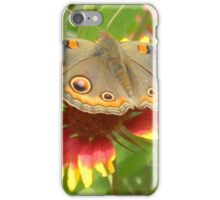 Butterfly on Indian Paintbrush iPhone Case/Skin