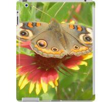 Butterfly on Indian Paintbrush iPad Case/Skin