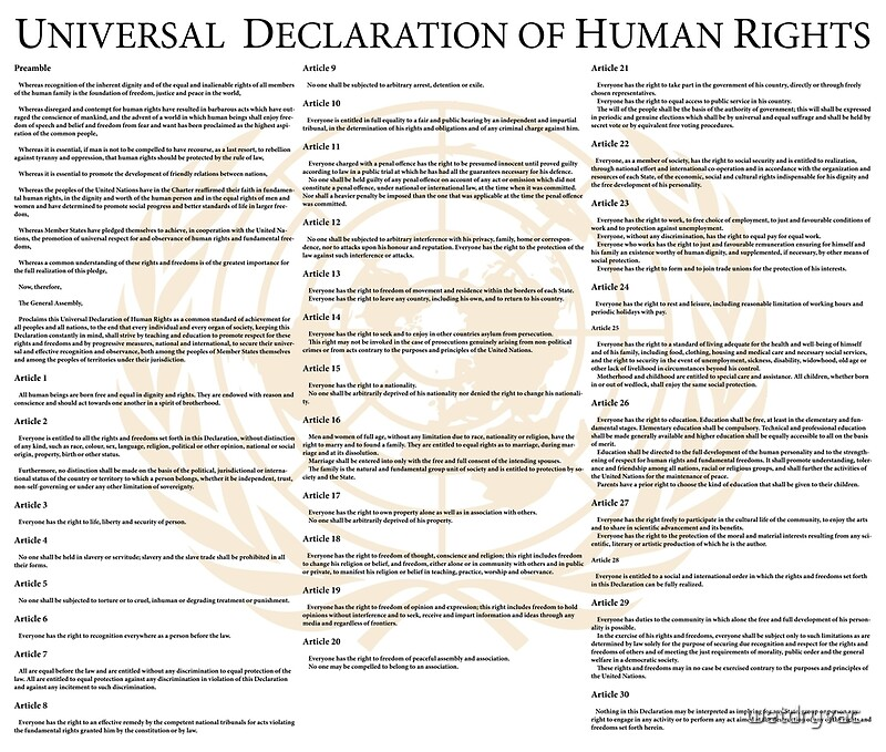 how to write an essay introduction about universal declaration of  universal declaration of human rights essay
