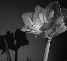 Flower by Noxious-Nikki