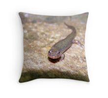 Dusky Salamander Throw Pillow