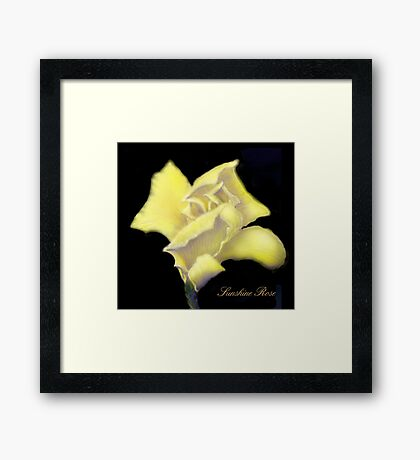 'Sunshine' Rose Digital Painting, Baroque Roses Framed Print