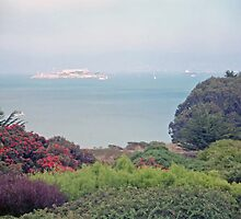 Alcatraz - San Francisco, California, USA by SteveOhlsen