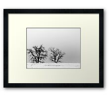 One Winter Day Framed Print