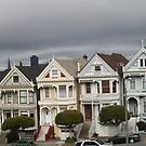 The Painted Ladies of San Francisco... by DonnaMoore