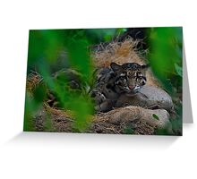 Watching Through the Trees Greeting Card
