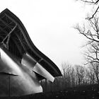 Silhouette Shine, Frank Gehry, Bard College, New York State by Jane McDougall