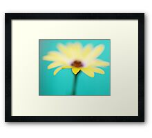 Yellow African Daisy on Brilliant Green Framed Print
