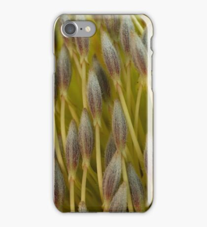 Little Brushes iPhone Case/Skin