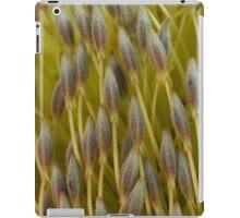 Little Brushes iPad Case/Skin