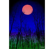 """ Howling at the Moon"" "" Photographic Print"