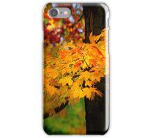 """""""Vertigo"""" iPhone Case/Skin"""