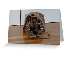 Journey to the Back of the Bag Greeting Card