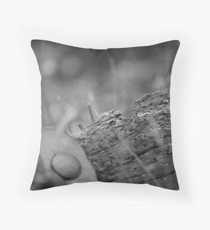 Old farm yoke Throw Pillow