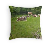 English Longhorn Cattle Throw Pillow