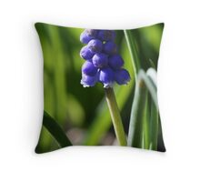 A Lonely Grape Hyacinth Throw Pillow