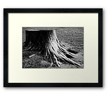 Five Ways of Seeing | 5 Framed Print
