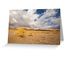 Dead dry grass in the Aravah Desert, Israel Greeting Card