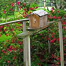 Bird House In The Garden by Linda Miller Gesualdo