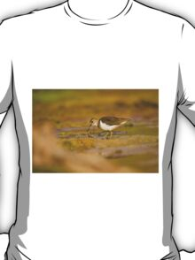 Common sandpiper (Actitis hypoleucos) foraging for food while wading in a pool.  T-Shirt