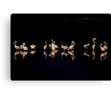 A flock of pelicans at night  Canvas Print