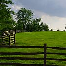 Fence on a Hill by Eric G Brown