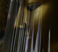 Cellophane Buddha by Kaylea