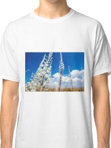 White Flowering Sea Squill, (Drimia maritima) on a blue sky background.  Classic T-Shirt