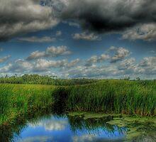 A Breath Of Fresh Air by Heather  Waller-Rivet  IPA