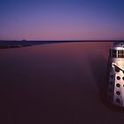 Dalek Dune by Mark Llewellynn