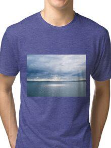 Got the Blues Tri-blend T-Shirt