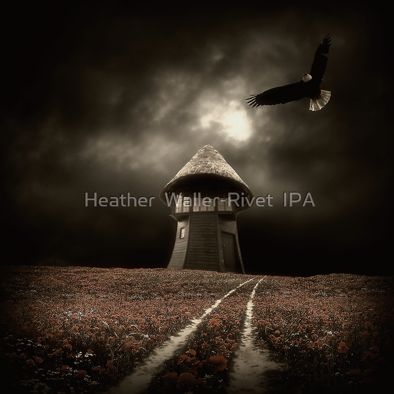 Zen by Heather  Waller-Rivet  IPA