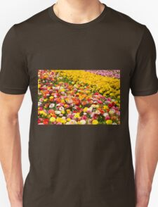 A field of multicolor cultivated Buttercup (Ranunculus) flowers  T-Shirt