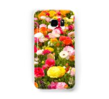 A field of multicolor cultivated Buttercup (Ranunculus) flowers  Samsung Galaxy Case/Skin