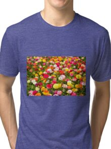 A field of multicolor cultivated Buttercup (Ranunculus) flowers  Tri-blend T-Shirt