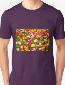 A field of multicolor cultivated Buttercup (Ranunculus) flowers  Unisex T-Shirt