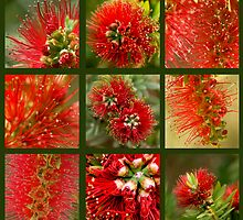 Bottle_Brush_Mosaic by ChiaraLily