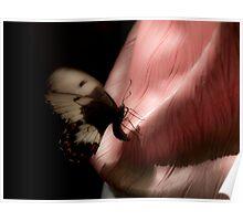 Silken Wings Poster