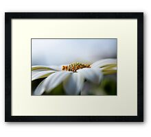 Simple & Pure Framed Print