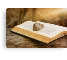 Stone on a Book Canvas Print